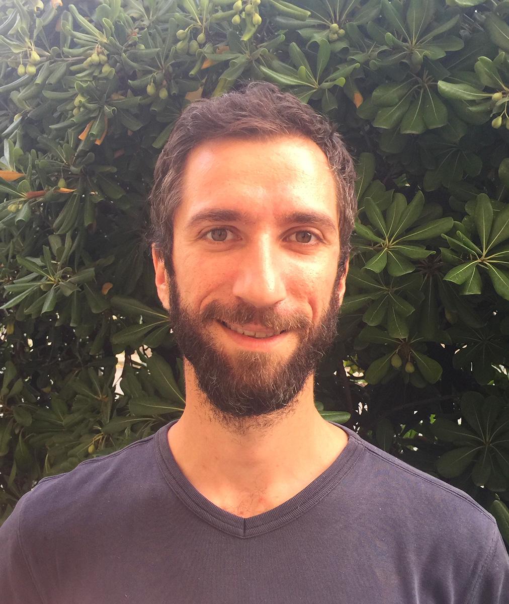 Fabio Demarchi